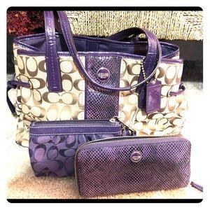 Coach Signature Python Carryall Shoulder Bag Set